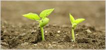 農業・土作り資材