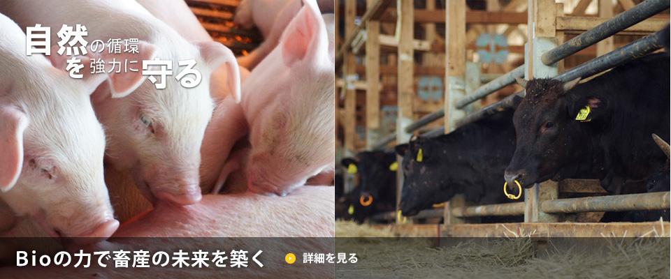 Bioの力で畜産の未来を築く